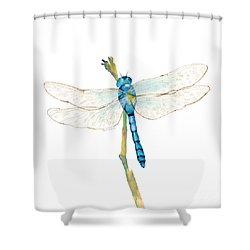 Blue Dragonfly Shower Curtain by Amy Kirkpatrick