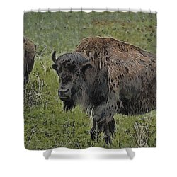 Buffalo Painterly Shower Curtain by Ernie Echols