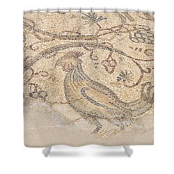 Byzantine Mosaic Depicting Animals And Hunting Scenes. Shower Curtain by Shay Levy