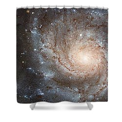 Cabbage With Galaxy And Pink Flowers Shower Curtain by Panoramic Images
