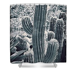 Cactus Land Shower Curtain by Kelley King