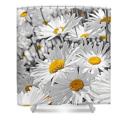 Daisies In Garden Shower Curtain by Elena Elisseeva