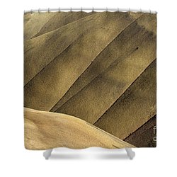 Desert Lines Shower Curtain by Mike  Dawson