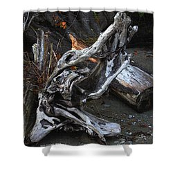 Driftwood On The Beach Shower Curtain by Tom Janca