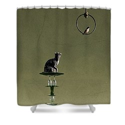 Equilibrium IIi Shower Curtain by Cynthia Decker