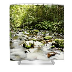 Forest Stream Shower Curtain by Les Cunliffe