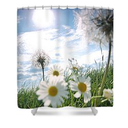Fresh Meadow Background Shower Curtain by Michal Bednarek
