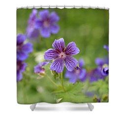 Geranium Himalayense Shower Curtain by Frank Tschakert