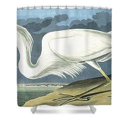 Great White Heron Shower Curtain by John James Audubon