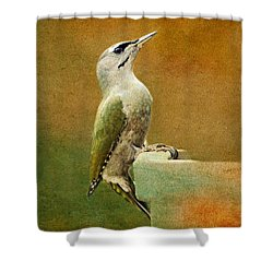 Grey-headed Woodpecker Shower Curtain by Heike Hultsch