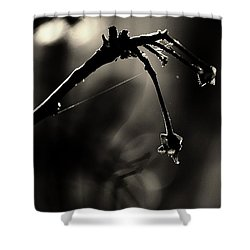 Hand Of Nature Shower Curtain by Jessica Shelton
