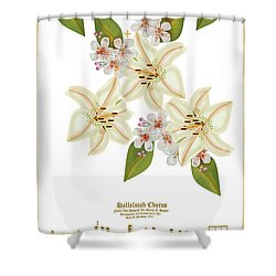 He Is Risen Shower Curtain by Anne Norskog