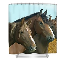 Hope Of The Mustangs Shower Curtain by Kate Black