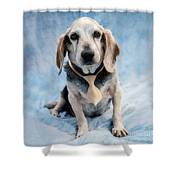Kippy Beagle Senior And Best Dog Ever Shower Curtain by Iris Richardson