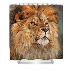 Lion Shower Curtain by David Stribbling