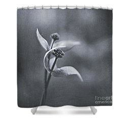 Lover's Dance Shower Curtain by Maria Ismanah Schulze-Vorberg