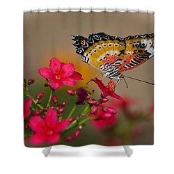 Malay Lacewing Butterfly  Shower Curtain by Saija  Lehtonen