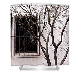 Mission Church Window Shower Curtain by Joe Kozlowski