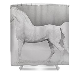 Moving Image Shower Curtain by Emma Kennaway