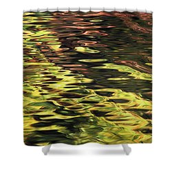 Oak And Maple Trees Reflections In Shower Curtain by Thomas Kitchin & Victoria Hurst