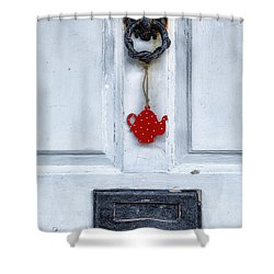Old Door Shower Curtain by Joana Kruse