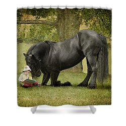 Once Upon A Time Shower Curtain by Fran J Scott