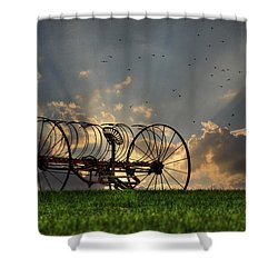 Out To Pasture Shower Curtain by Lori Deiter