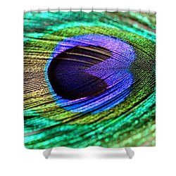 Peacock Feather Shower Curtain by Heike Hultsch