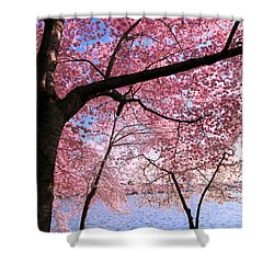 Pink Shower Curtain by Mitch Cat