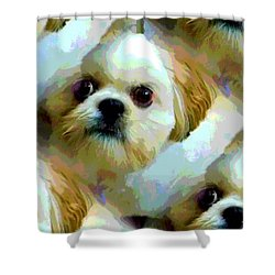 Sarah Shower Curtain by Carolyn Repka