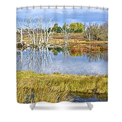 Seasons End Shower Curtain by Frozen in Time Fine Art Photography