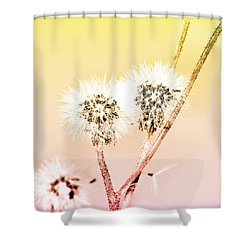 Spring Dandelion Shower Curtain by Toppart Sweden