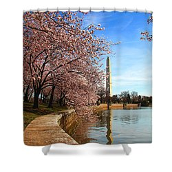 Spring Shower Curtain by Mitch Cat