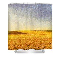 Summer Field Shower Curtain by Pixel Chimp