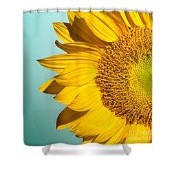 Sunflower Shower Curtain by Mark Ashkenazi
