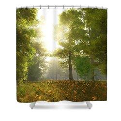 Sunlit Meadow Shower Curtain by Cynthia Decker