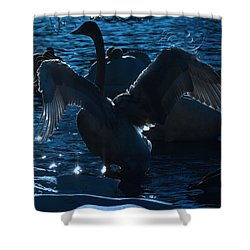 Swan Spreads Its Wings Shower Curtain by Toppart Sweden