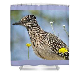 The Greater Roadrunner  Shower Curtain by Saija  Lehtonen