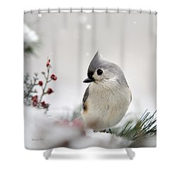 Tufted Titmouse Square Shower Curtain by Christina Rollo