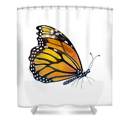103 Perched Monarch Butterfly Shower Curtain by Amy Kirkpatrick