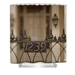 1239 Gate Shower Curtain by Heather Green