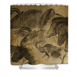 131018p051 Shower Curtain by Arterra Picture Library