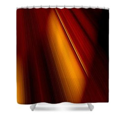Abstract Art Shower Curtain by Heike Hultsch