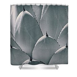Agave Leaves Shower Curtain by Kelley King