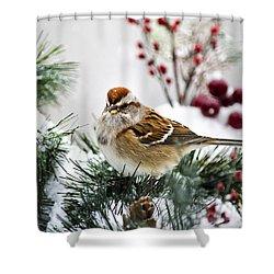 Christmas Sparrow Shower Curtain by Christina Rollo