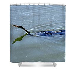 Anhinga Shower Curtain by Art Wolfe
