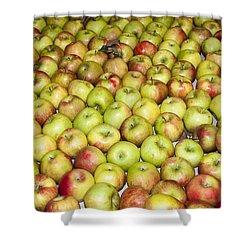 Apples Shower Curtain by Steven Ralser