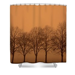 Beautiful Trees In The Fall Shower Curtain by Toppart Sweden