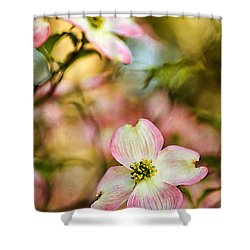 Blooms Of Spring Shower Curtain by Darren Fisher