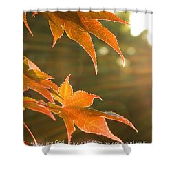 2 Chronicles 6 Shower Curtain by Andrea Anderegg
